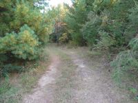 2.81 Acres County Road CS